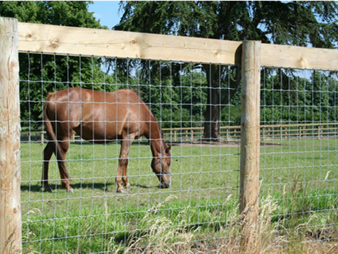 Galvanized Farm Fence | Agricultural & Livestock Fencing