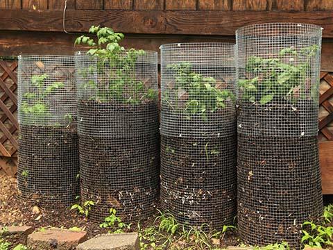 Galvanised Garden Wire