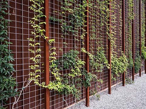 Galvanised Garden Wire Mesh | Steel Garden Fence