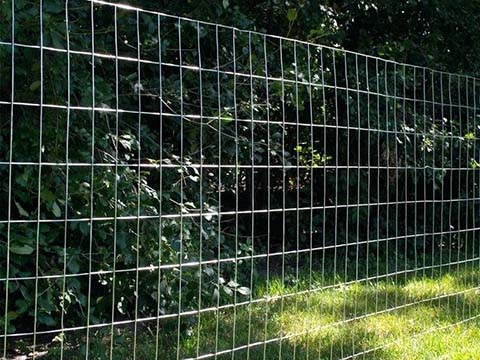 Galvanized Steel Wire Mesh | Hot-dipped GI Wire Mesh