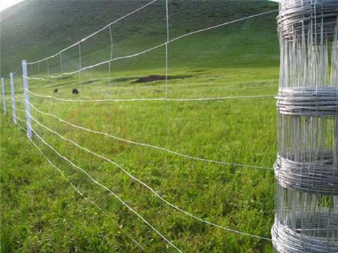 Use of Fences